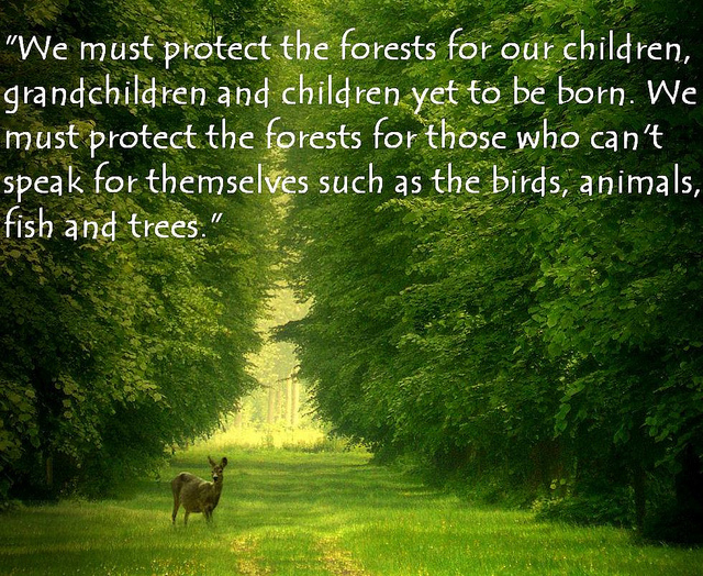 Protect Forests, Protect our future generations.
