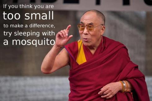 Dalai-Lama-Mosquito2