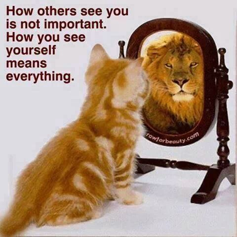 It S How You See Yourself Cat And Lion