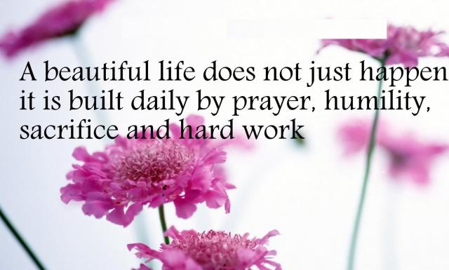 quotes-beautiful-life-232782