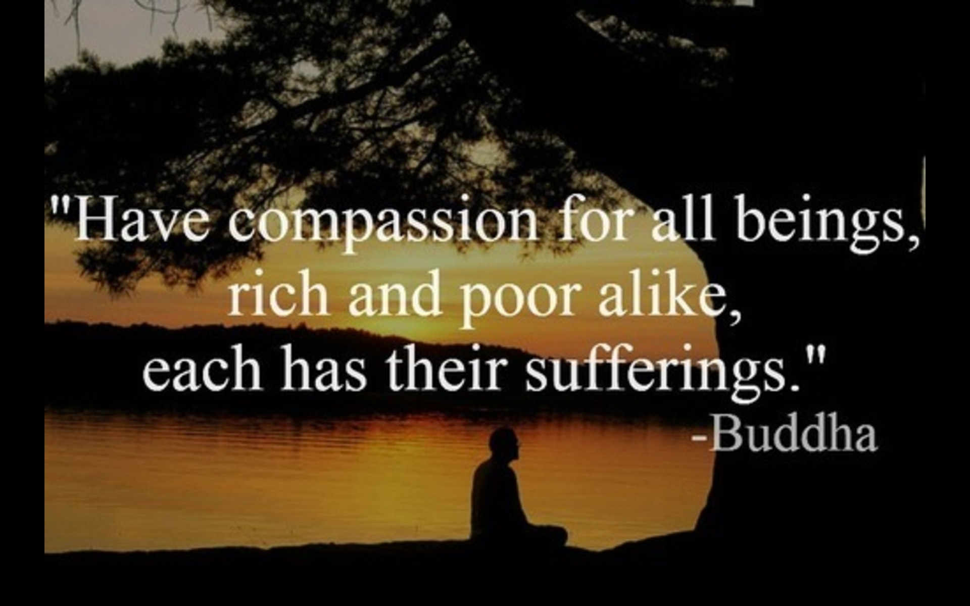 Buddha Life Quotes Have Compassion For All Beings Rich & Poor Alike Each Has Their