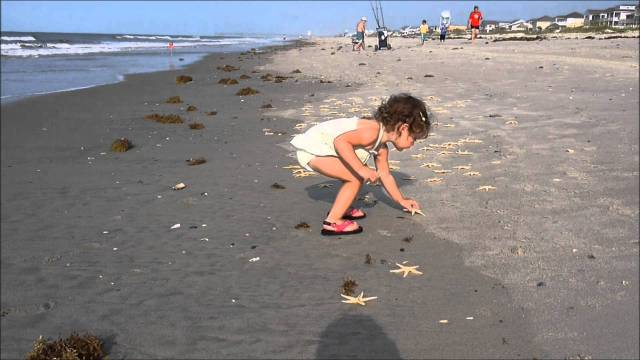 Boy and the starfish