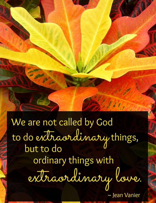 ExtraordinaryQuote-Do-extraordinary-things-with-love-AnExtraordinaryDay