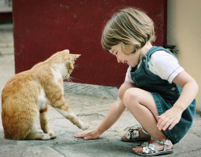 Compassion-girl-cat