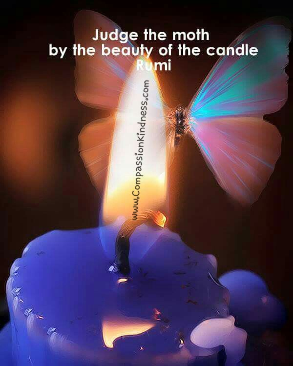 Judge The Moth By The Beauty Of The Candle Rumi A Small Act Of